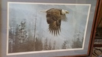 Robert Bateman Majesty on the Wing